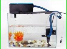 pompa udara aquarium yang bagus, pompa udara aquarium, fungsi pompa udara aquarium, cara kerja pompa udara aquarium, apa fungsi pompa udara di dalam akuarium, cara memperbaiki pompa udara aquarium, pompa udara aquarium besar, mesin udara aquarium